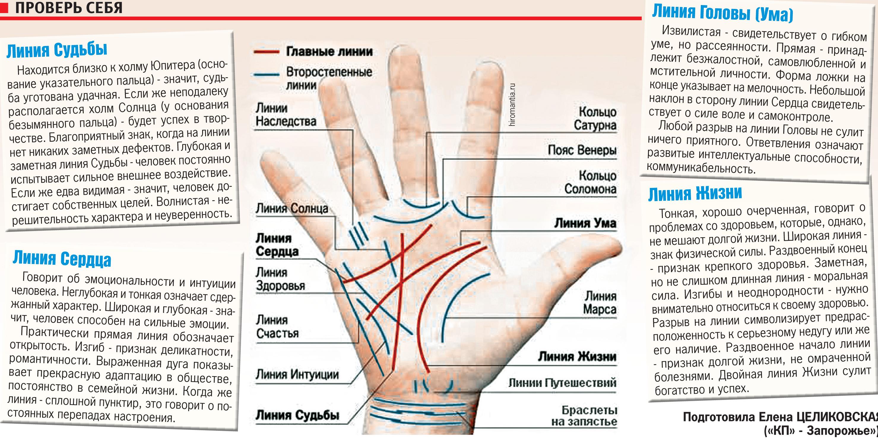 Линии на руке: что они означают? Как узнать свое будущее 38