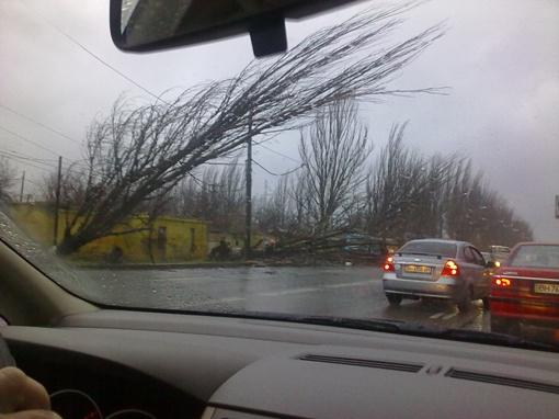 Ураган причинил горожанам много неудобства. Фото: сайт forum.od.ua и vk.com