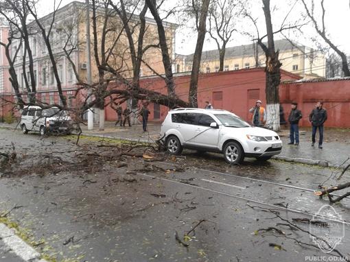На проезжую часть упало два десятка деревьев. Фото: сайт forum.od.ua и vk.com