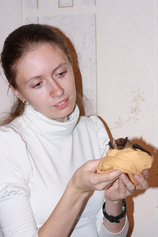 Алена Гукасова советует не пугаться, если пушистый зверек запорхнул в квартиру.