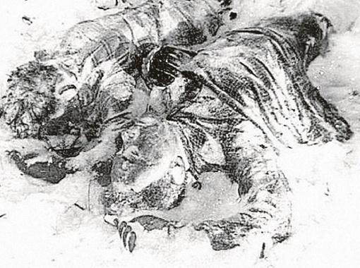 Трупы были укрыты одеялом. Фото авторов.