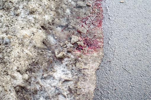 Кровь Анны на асфальте. Фото Андрея Хрусталева