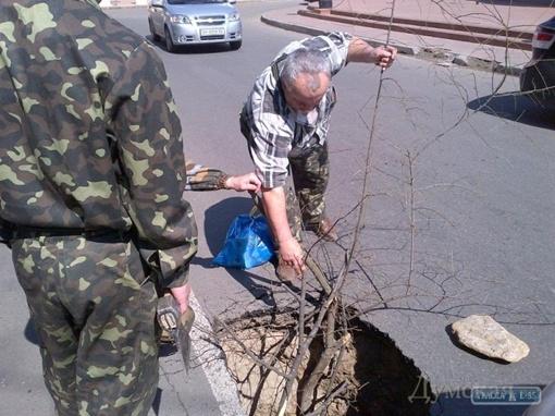 Фото Александра Варваренко, dumskaya.net