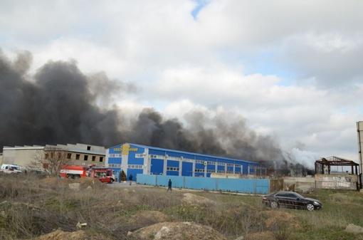 Сильный пожар под Одессой. Фото: vk.com/yuzhny_city