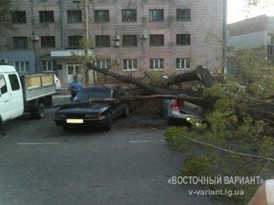 Фото: v-variant.lg.ua