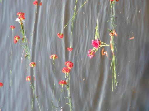 Днепр был красным от гвоздик. Фото: Елена СОРОМИТЬКО