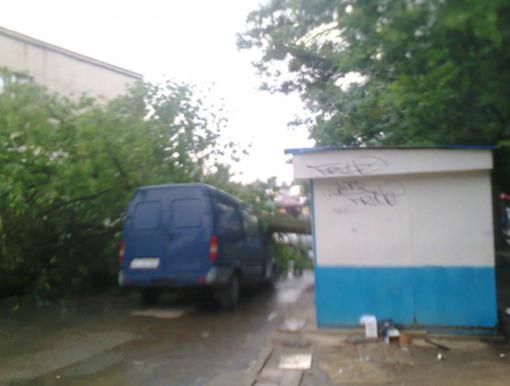 Фото: kolo.poltava.ua