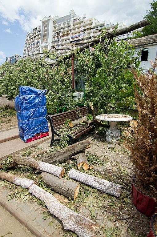 Фото: dumskaya.net
