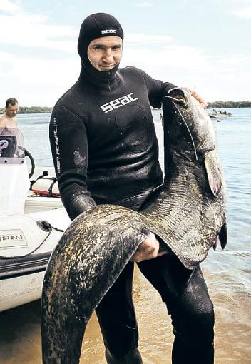 Есть, есть еще в седом Днепре рыбка большая и очень большая! Фото: личный архив Юрия Пакселева.