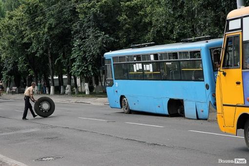 К счастью, на пути колеса машин не попалось. Фото: Волинь. Post