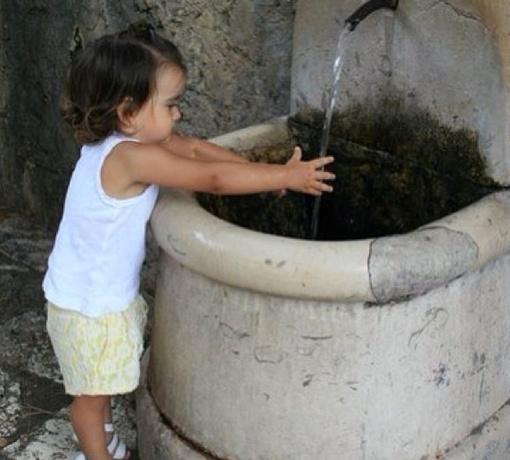 Судя по всему Софийка, как и все дети, любит полоскаться в воде. Фото: twitter.com/LorakOfficial