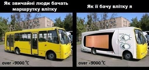 379Порно не было чем расплатиться за автобус