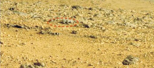 А это ящерица, попавшая в кадр. Очень похожа на реальную, хотя, скорее всего, это шалости марсианских ветров...