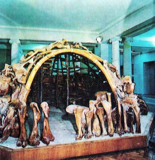 Макет жилища из костей мамонта. Фото: автор.