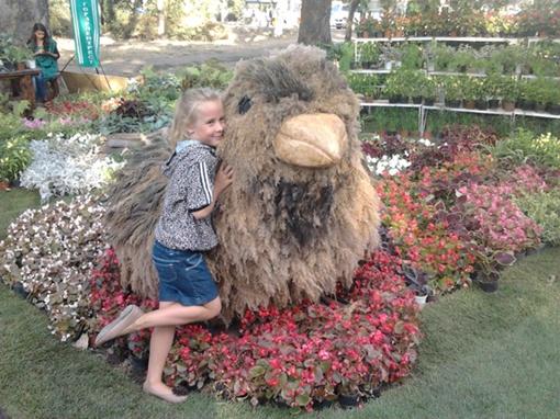 На выходных в парке Победы прошла выставка цветов