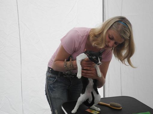 Влада Тимощук умеет уговорить даже самую строптивую кошку. Фото: Максим КРЮК.
