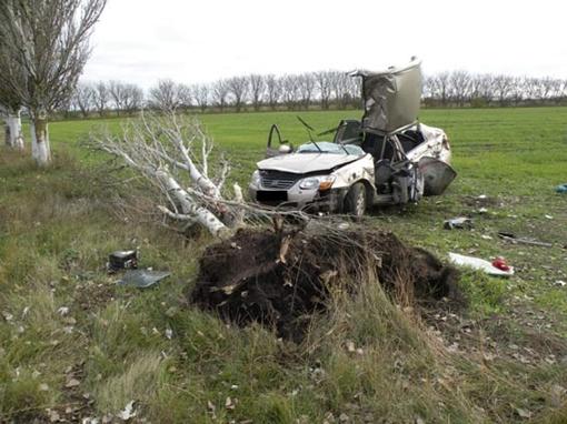 ДТП в Николаевской области: иномарку разорвало на части