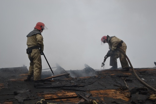 Очагом возгорания стала крыша свинофермы. фото: ГСЧС в Одесской области