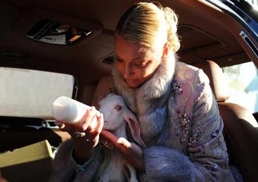 Несколько дней и ночей подряд Настя кормила животное козьим молоком из бутылочки. Фото: Иван ВИСЛОВ