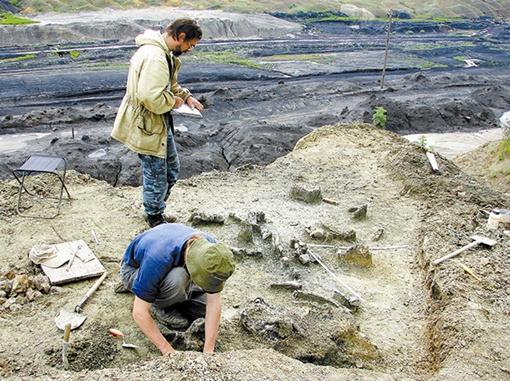 В раскопках Сергею Краснолуцкому помогали его ученики-скульпторы. Фото: Сергей КРАСНОЛУЦИКЙ