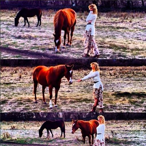 Для фото с лошадью пришлось перепрыгнуть через забор