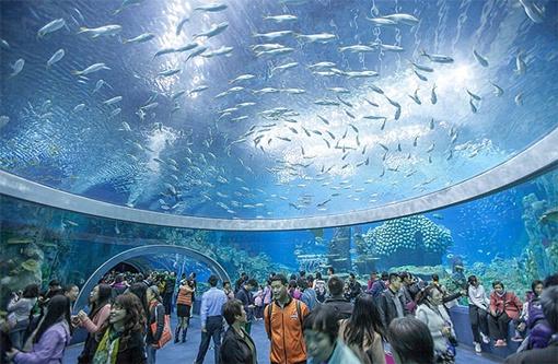 Резервуары аквапарка вмещают аж 22,7 миллиона литров воды!