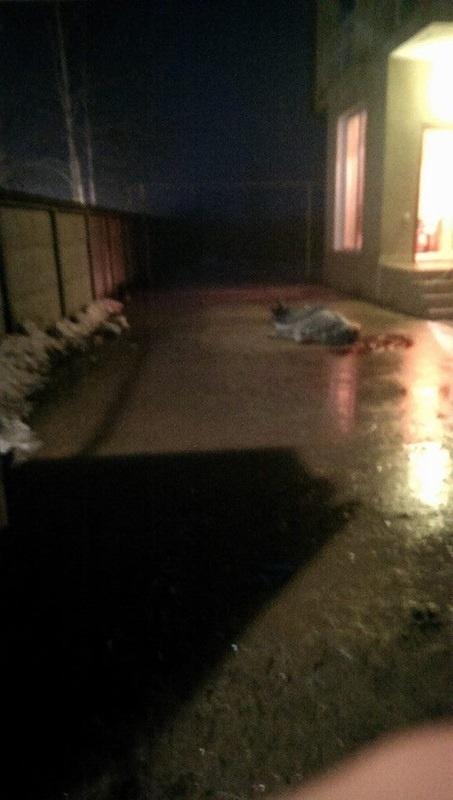 В Одессе, чтобы завладеть домом, юрист застрелил троих фото 2