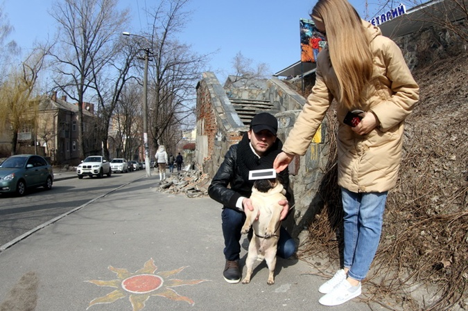 В Днепропетровске даже собаки интересовались солнечным затмением  Фото: Павел ДАЦКОВСКИЙ