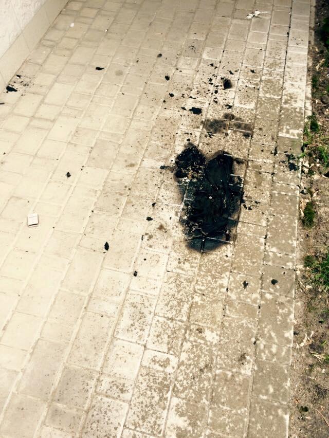 Поджог не вышел. Фото: ФБ депутата