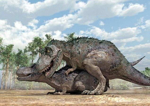 Discovery секс у тиранозавров