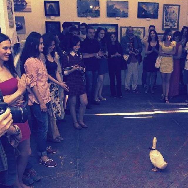 Выставка Утки прошла с большим успехом Фото: соцсети