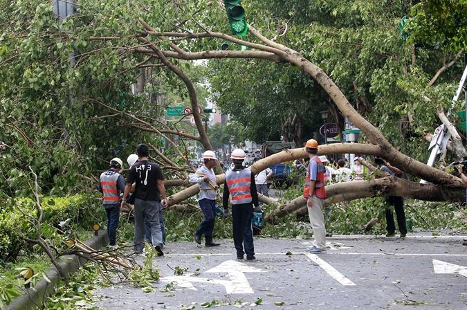Большие убытки произвел тайфун. Фото: REUTERS