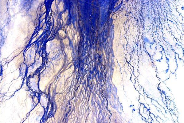 Этот снимок напоминает щупальца медузы. Фото: twitter.com/StationCDRKelly