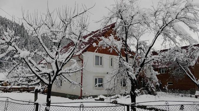 На Ивано-Франковщине выпал снег. Фото: ФБ Татьяна Гончарова