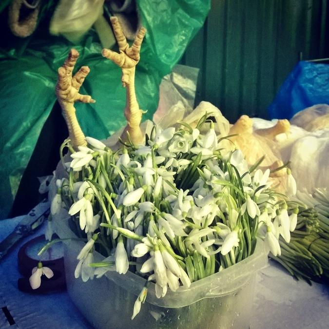Цветы продают рядом со свежей птицей. Фото: Олег ТЕРЕЩЕНКО