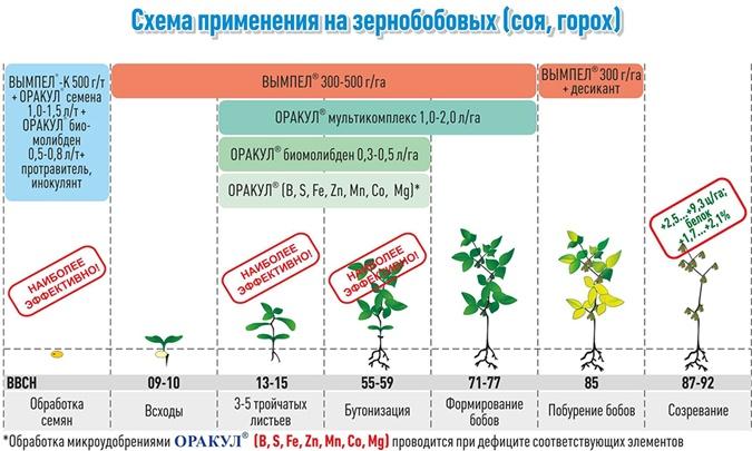 Факт. Системный уход за посевами – гарантия высокого и качественного урожая фото 2