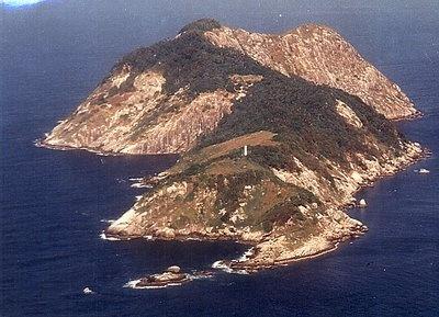 На острове обитают тысячи ядовитых змей Bothrops insularis.