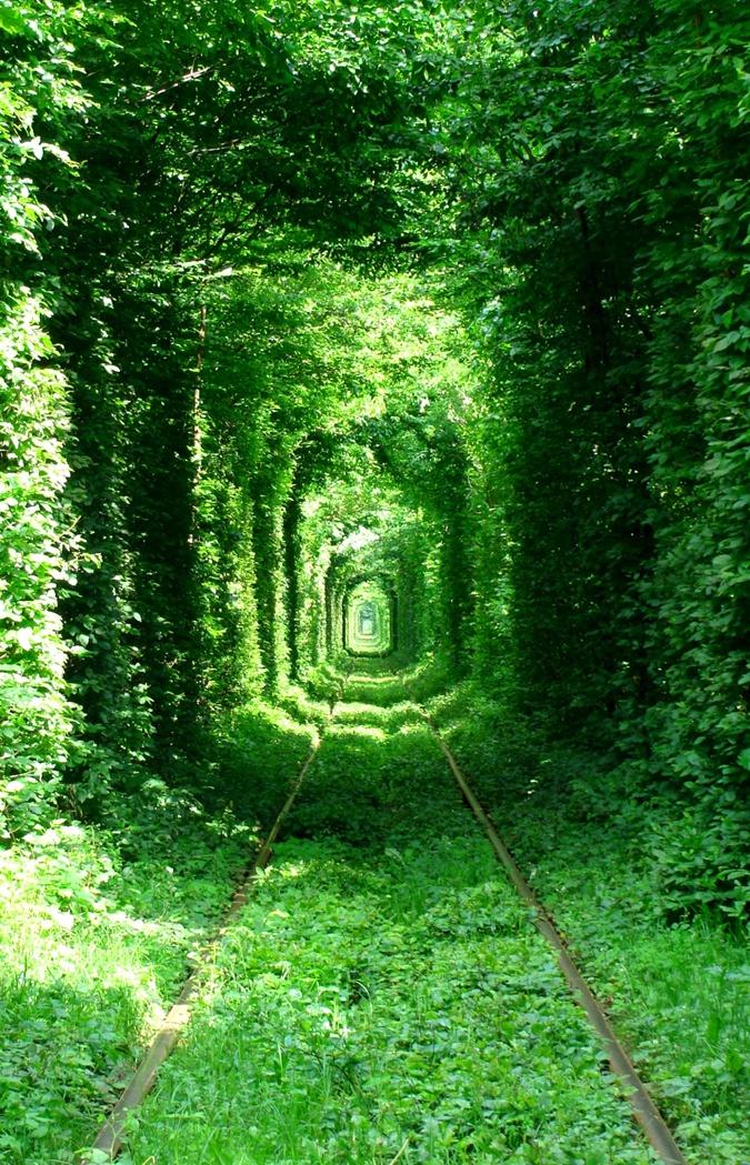 Легенда гласит, что пару, которая поженится в Тоннеле любви, ничто не разлучит.