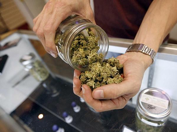 Английские народные избранники посоветовали легализовать марихуану