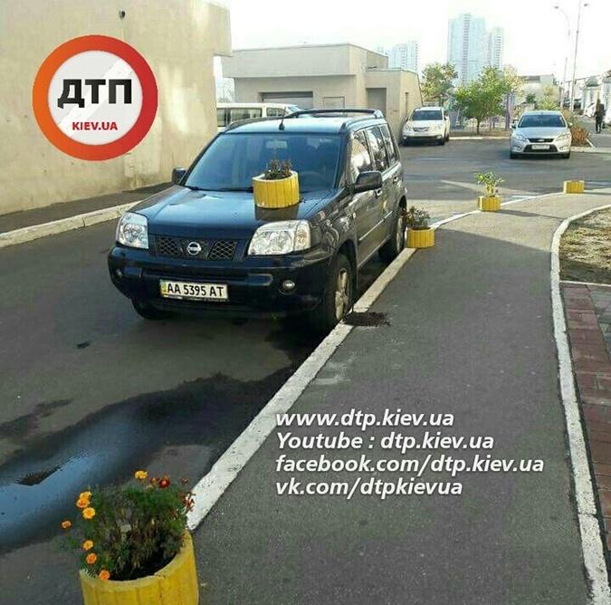 на капот автомобиля поставили горшок с цветком. Фото: dtp.kiev.ua