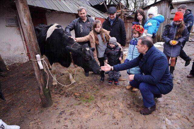 Ляшко расстался со своей коровой фото 1