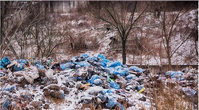 Львовским мусором засыпали спальный район города фото 1