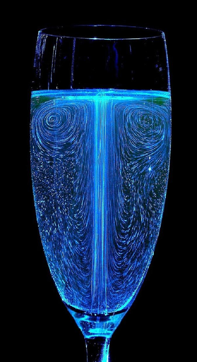 Высокий бокал почти целиком заполняют движущиеся пузырьки.