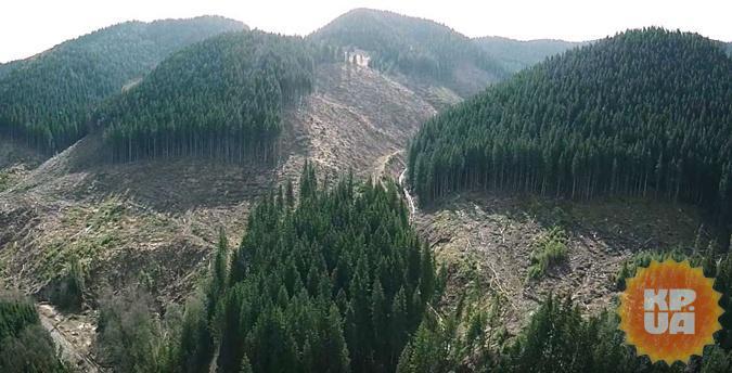Экологические катастрофы, которые грозят Украине: лысые горы и токсичный смог фото 1