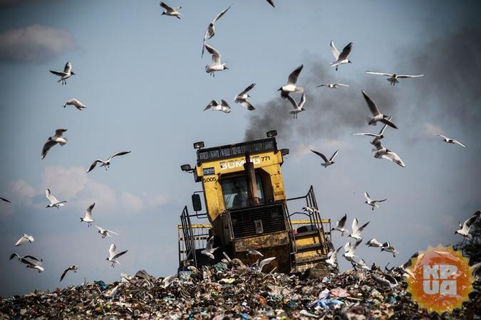Экологические катастрофы, которые грозят Украине: лысые горы и токсичный смог фото 2