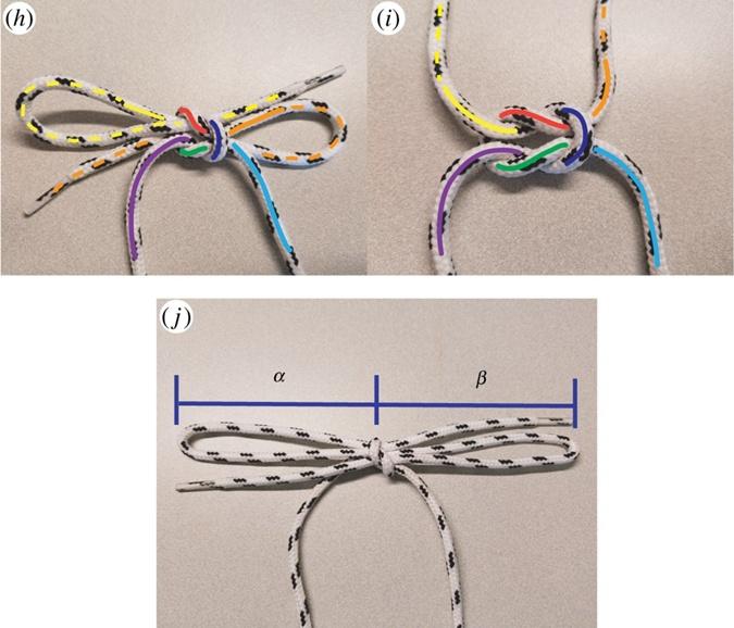 Ученые выяснили, почему развязываются шнурки фото 4