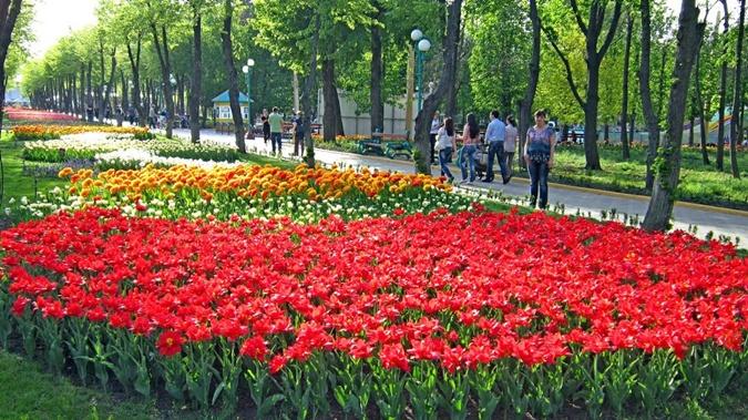 Лучшие фестивали в Украине на майские праздники фото 1