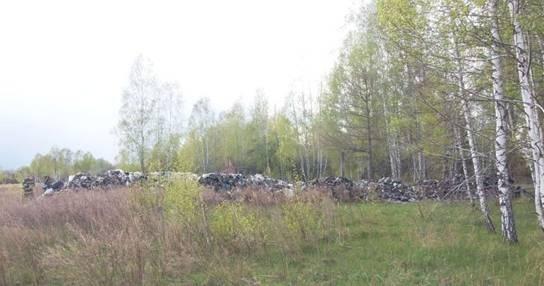 К годовщине взрыва на ЧАЭС Львов подбросил в зону мусора фото 3