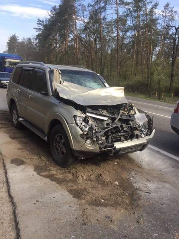 Вячеслав Узелков разбил машину вдребезги из-за появления на трассе лося фото 1