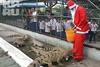 Крокодил очень просил на Новый год Деда Мороза